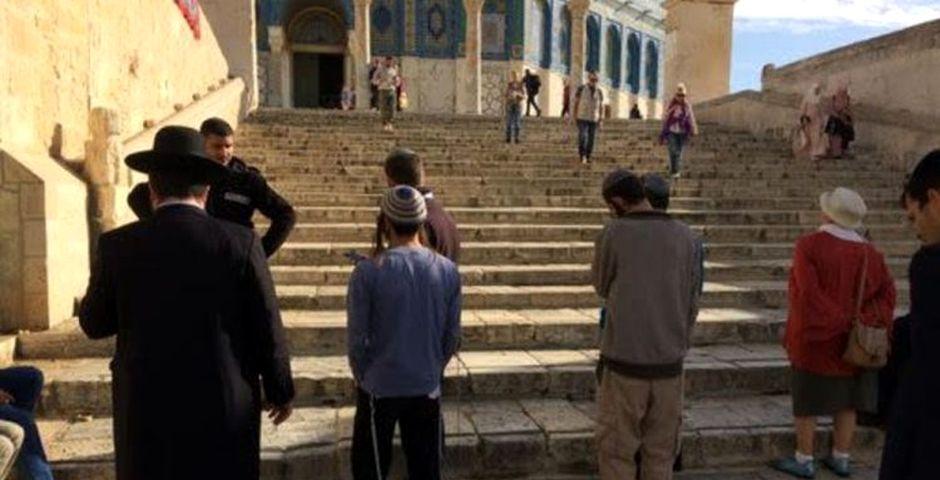Oración judía el pasado jueves en el Monte del Templo / Jerusalem Post,Oración judía en el Monte del Templo