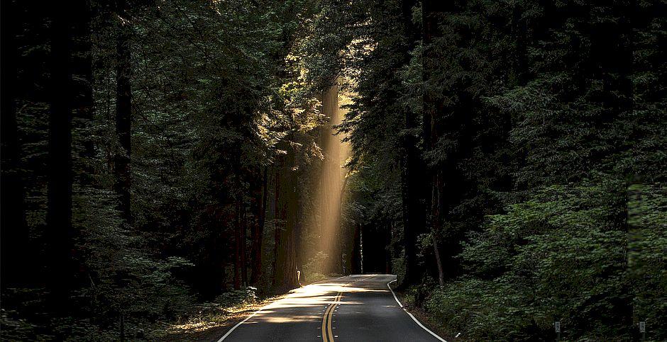 John Towner, Unsplash,camino con un rayo de luz